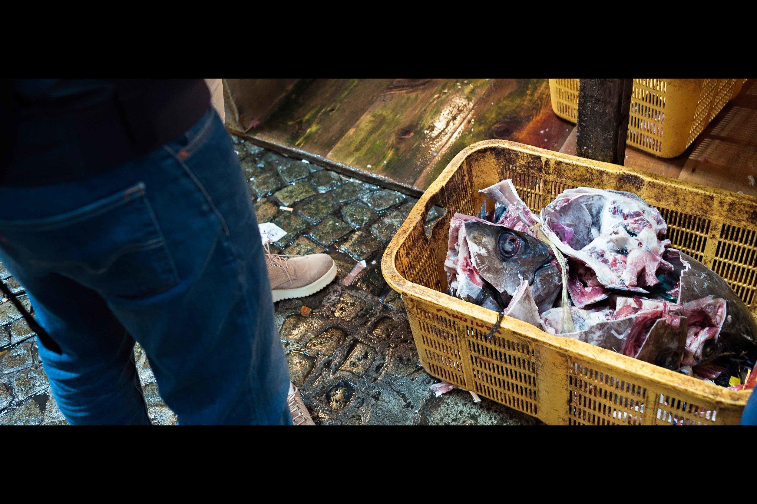 tuna-head-discard-market.jpg