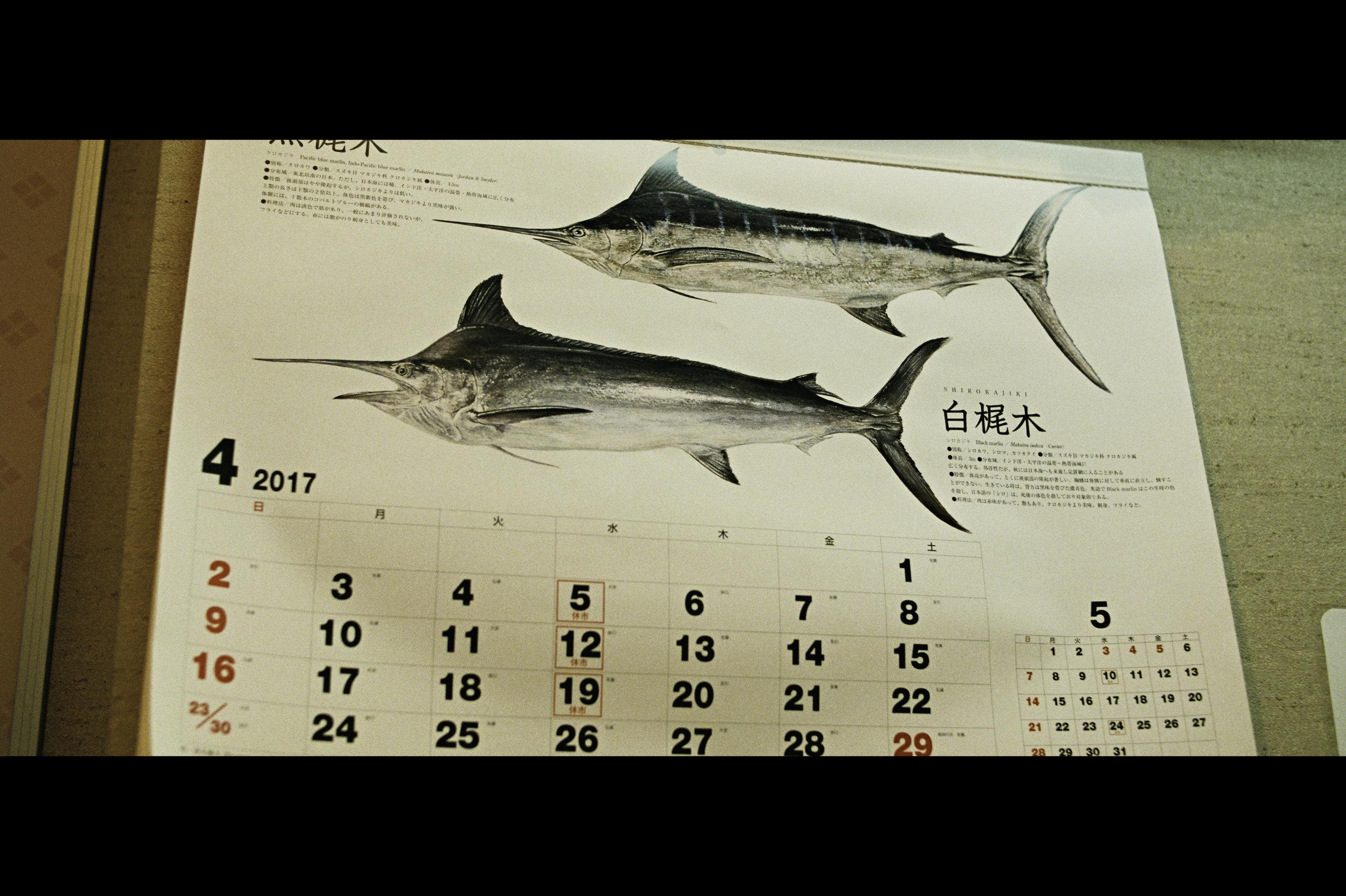 marlin-sword-fish-calendar-may-2017