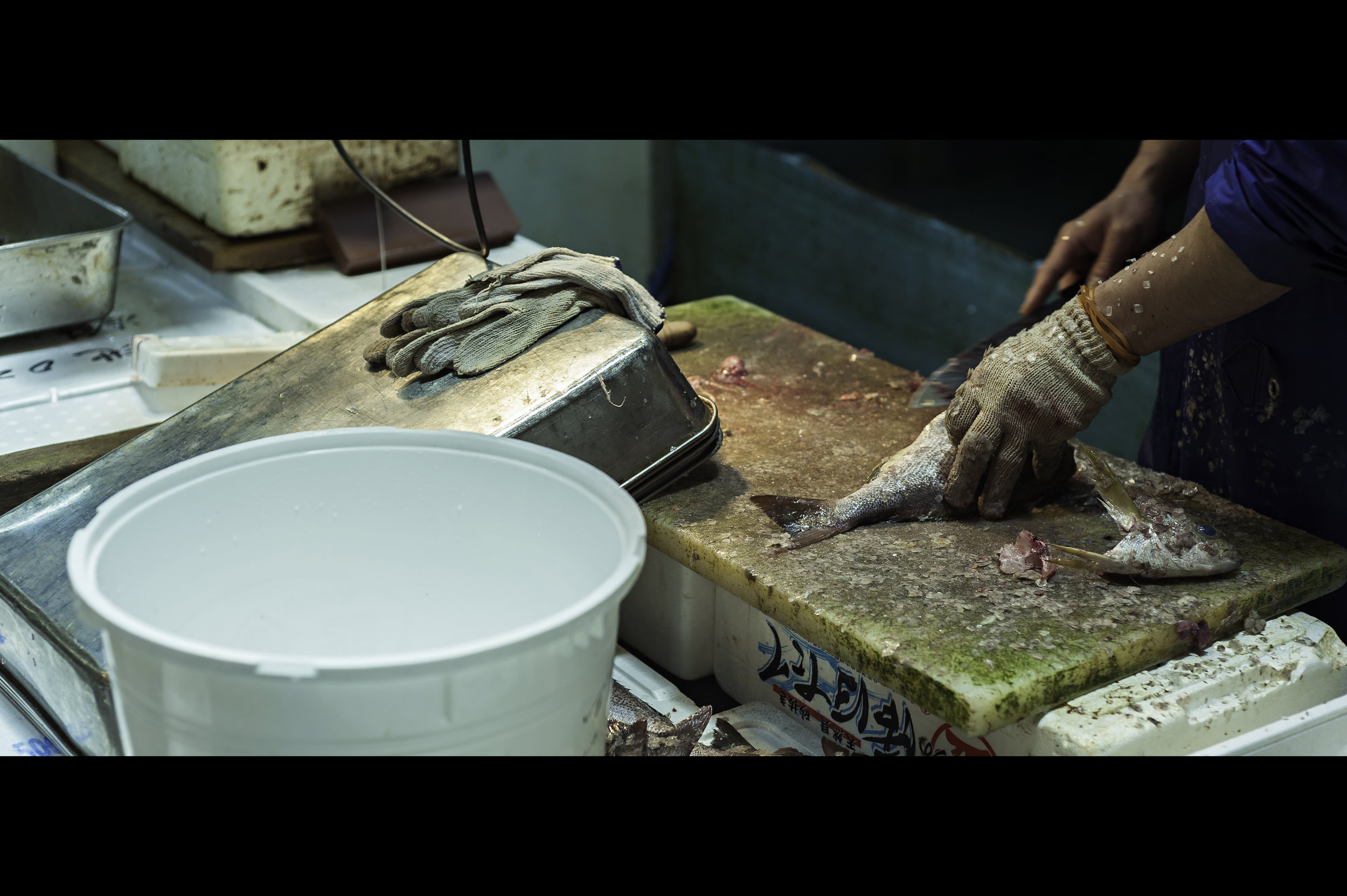 gutting-and-scaling-fish-hands-working