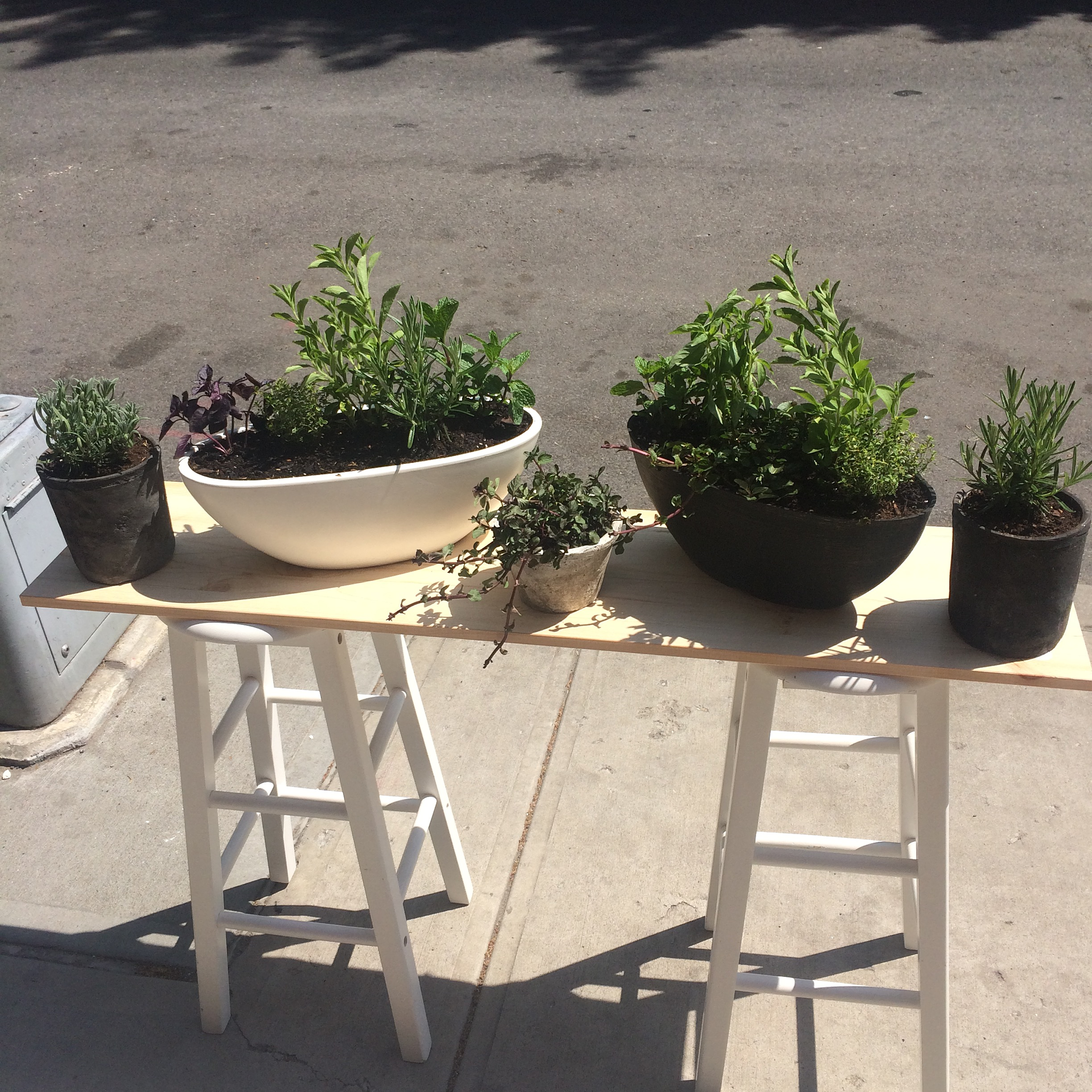 Herb Combo Planters
