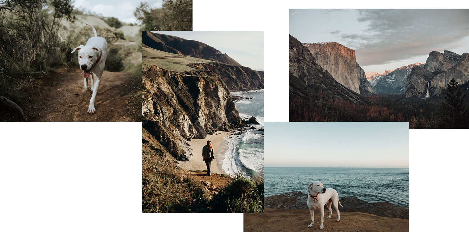 San Francisco Bay Area Photographer - Northern California Wedding - Big Sur Adventures - Yosemite National Park Tunnel View - Santa Cruz The Cove