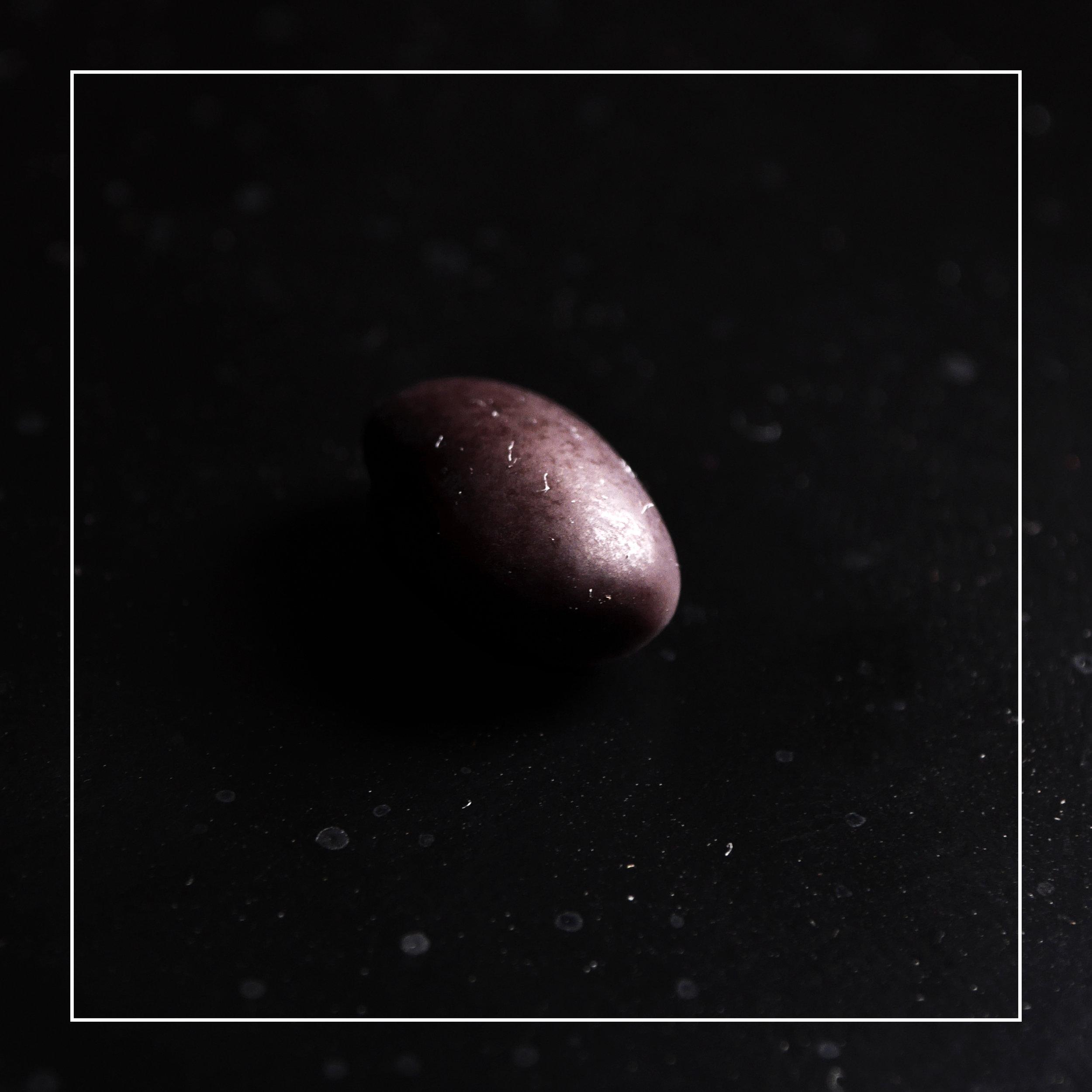 black beans border.jpg