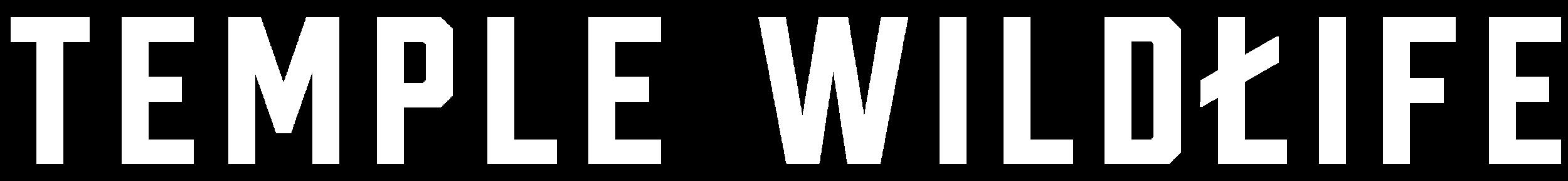 Longform logo white