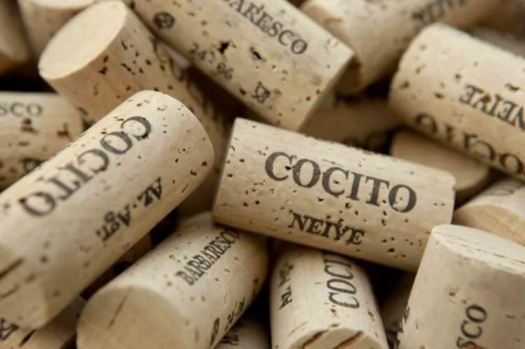 Cocito.jpg