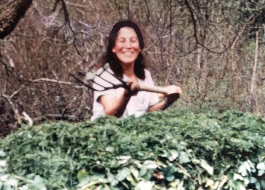 The joy found in gardening