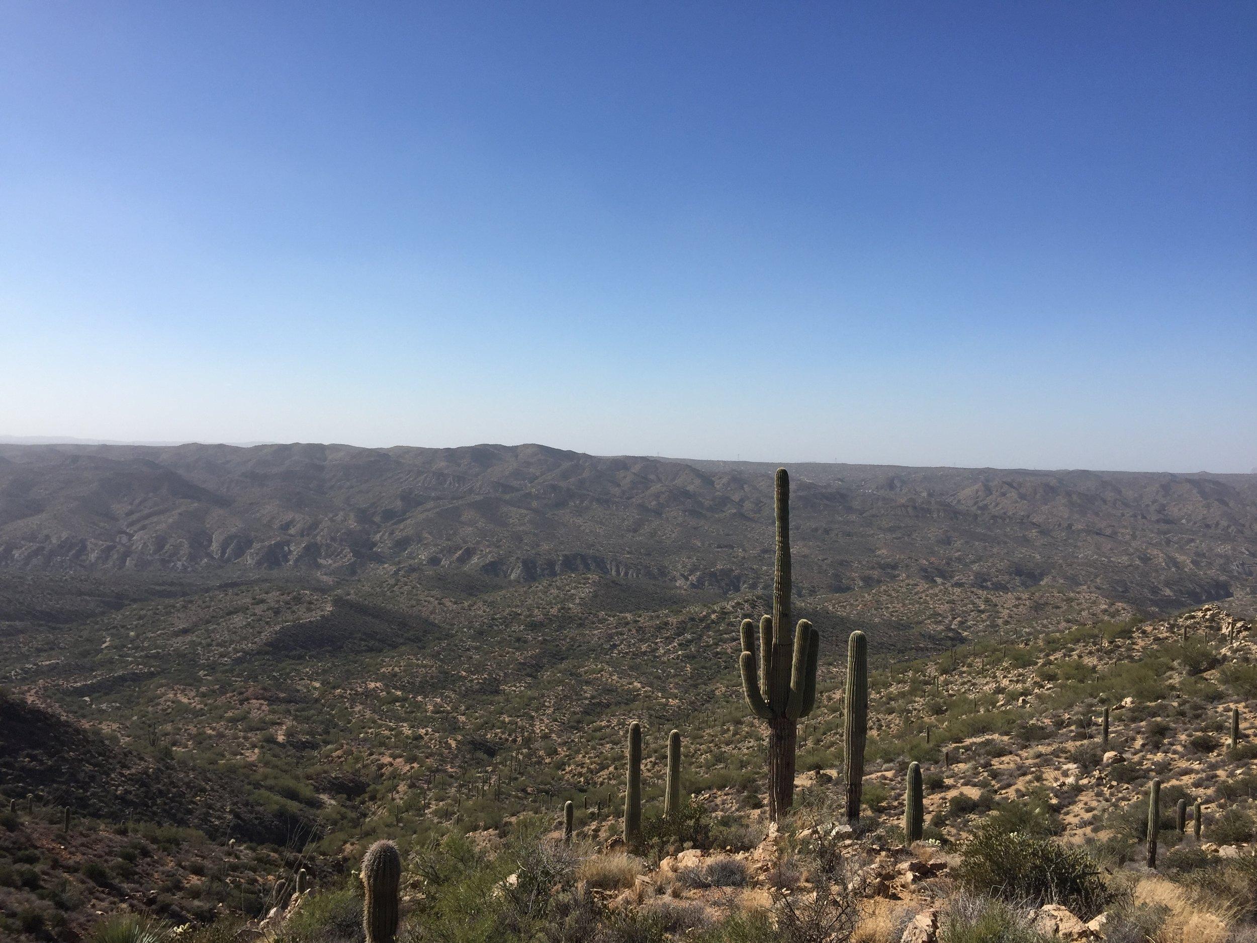 Tortilla mountain vistas