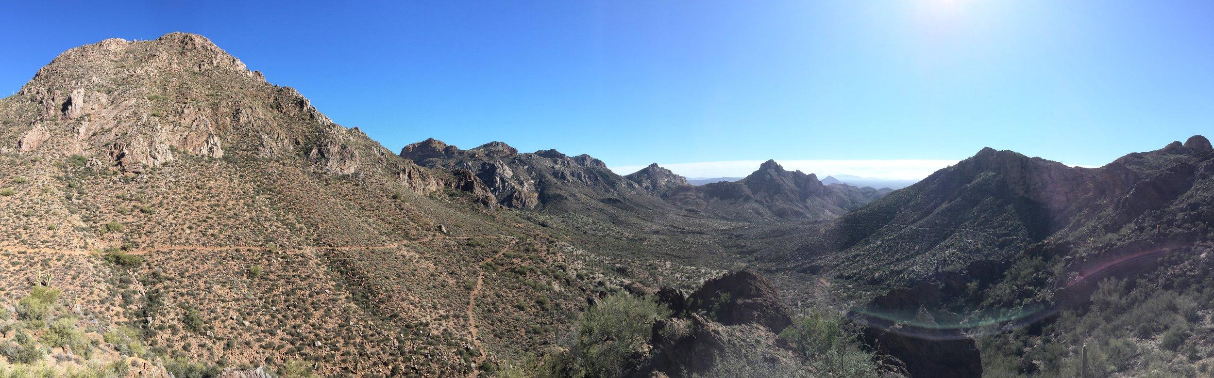 Trails scratched through the desert wilderness