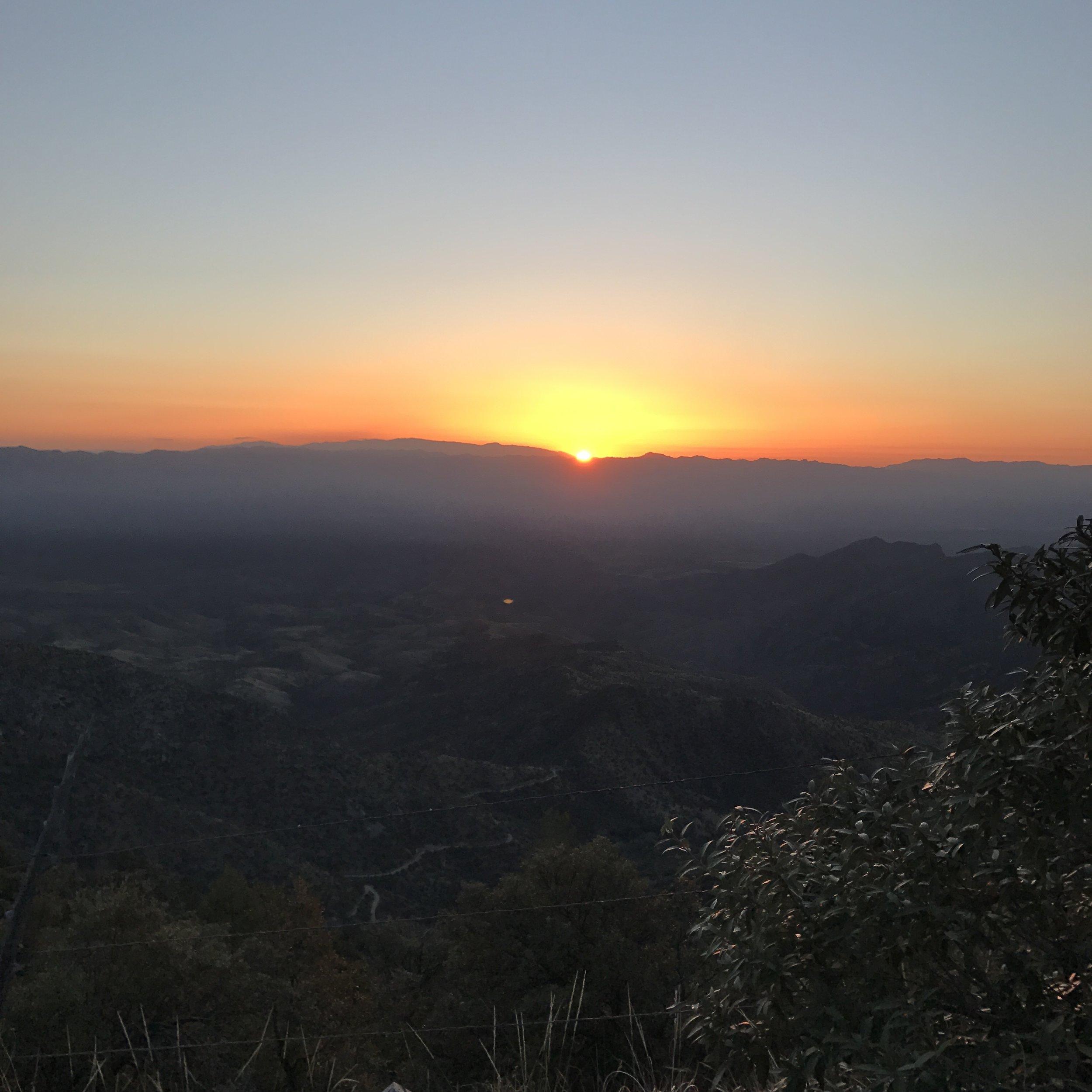Oracle Sunrise
