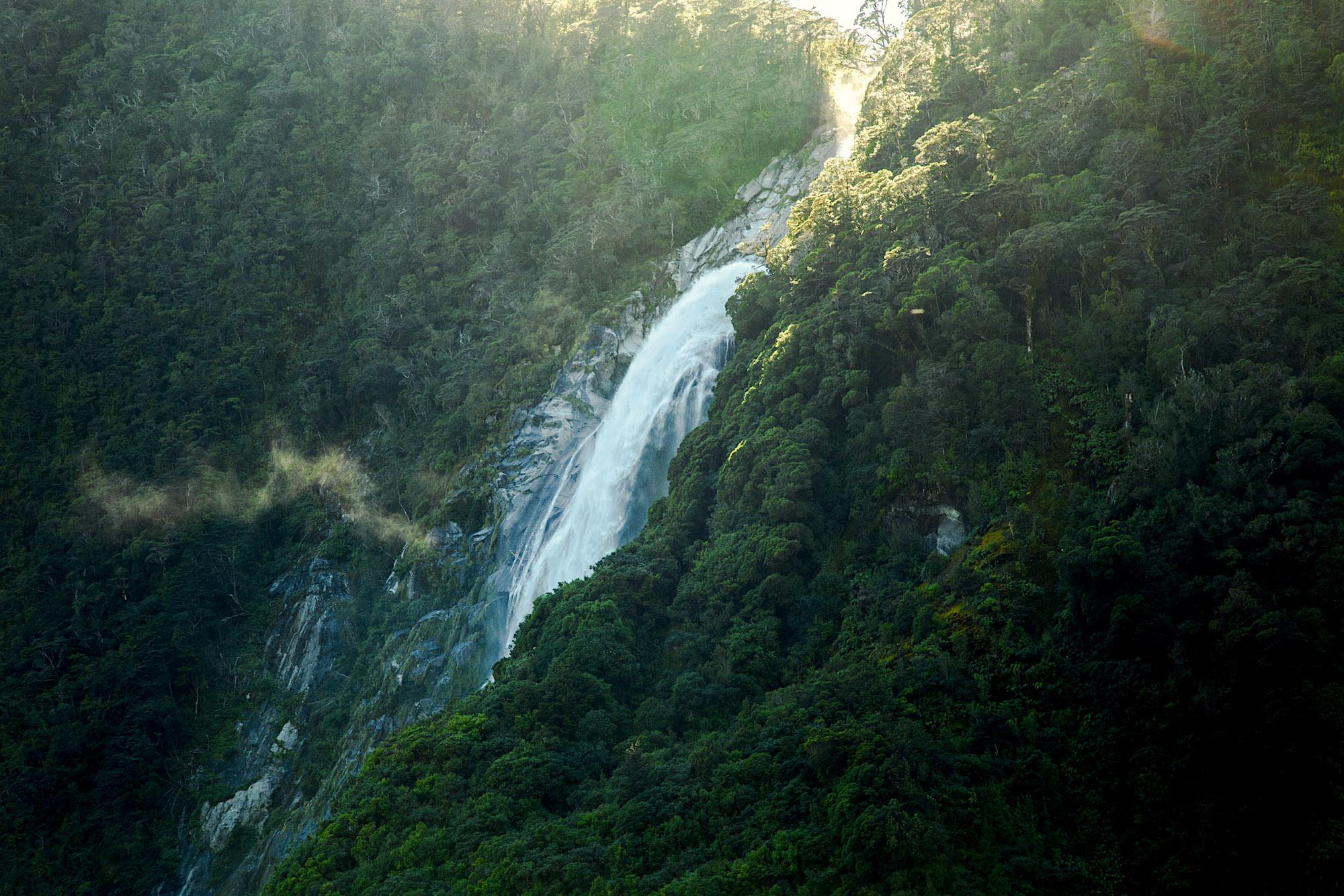 ThucCreative-NZ-8460.jpg