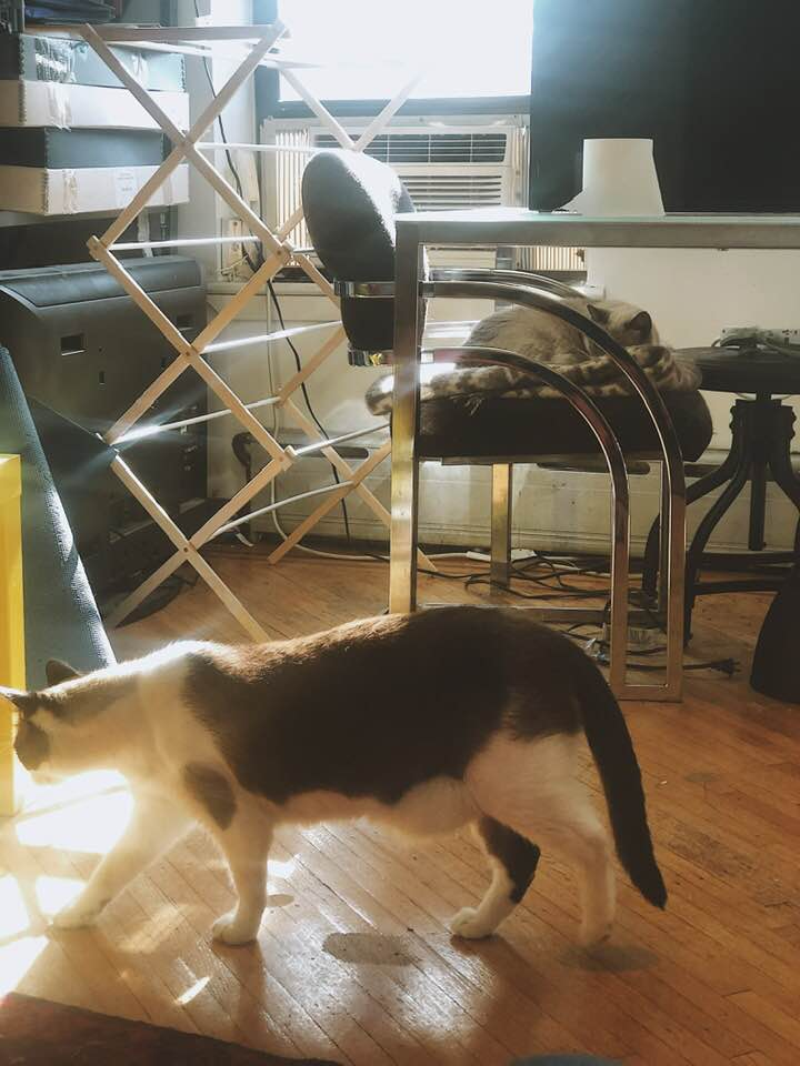 """April 17, 2019 