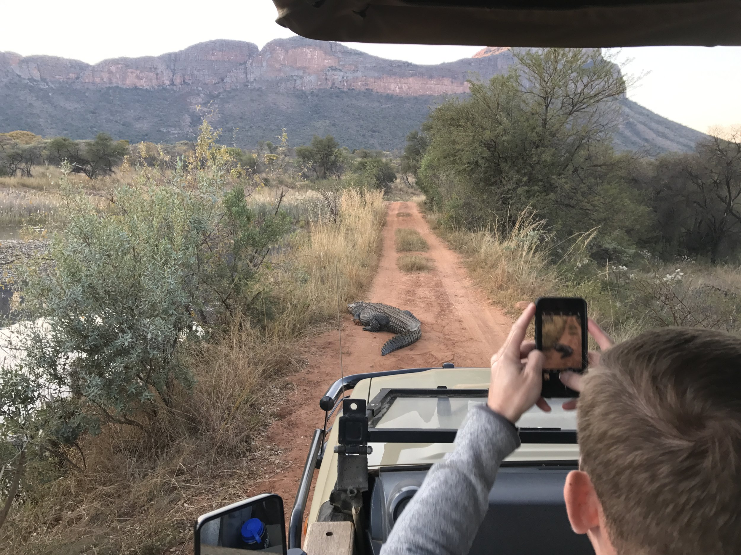 We saw this crocodile on our marathon course, two days later I would run down this dirt road.