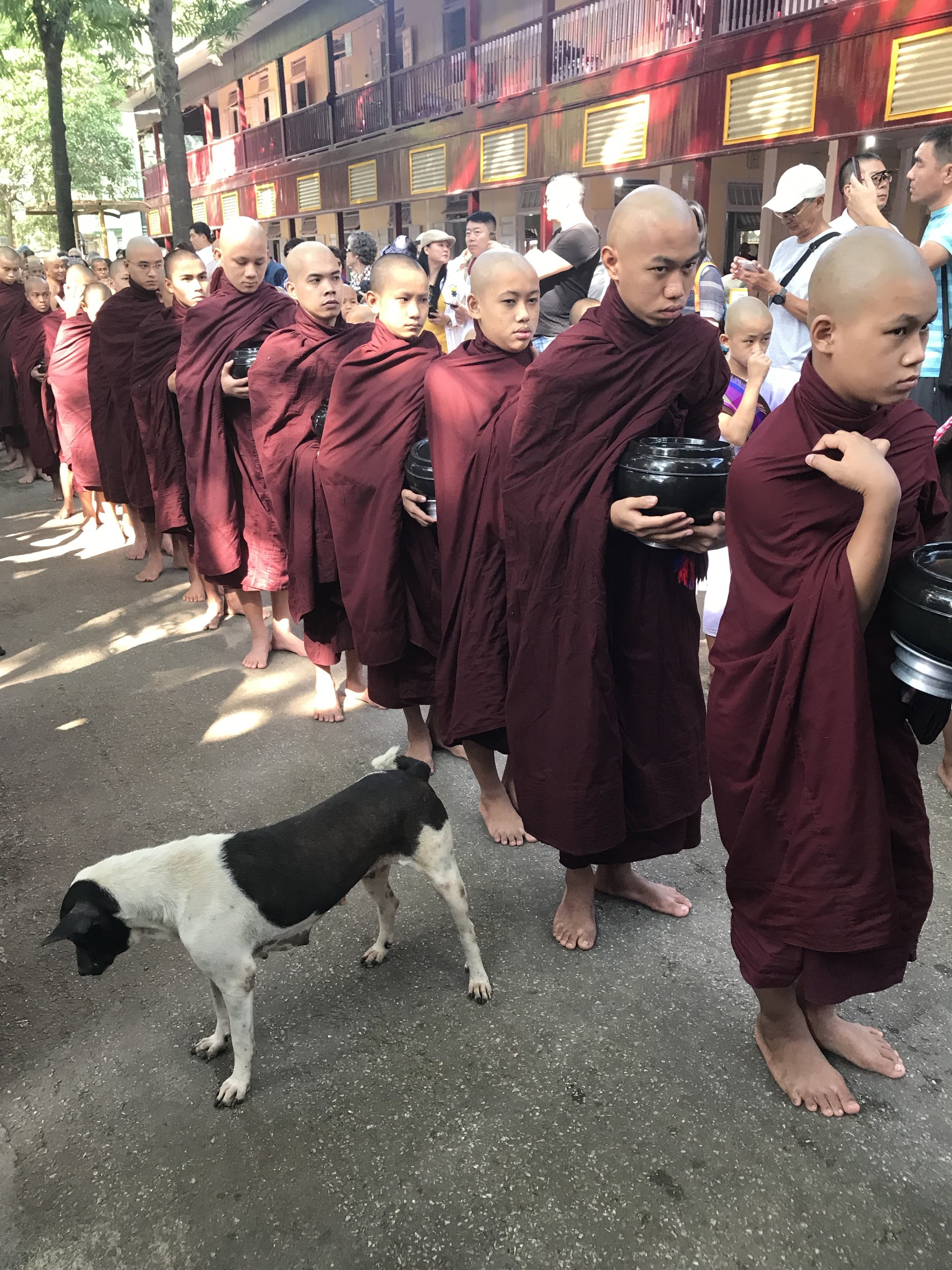 Nearly 90% of the population in Myanmar practice Buddhism - Theravada is the most common tradition. Above -    Daily Alms Round     In  Theravada  Buddhism, many monks (Pāli:   bhikkhus  ) go on a daily almsround (or  pindabat ) to collect food.