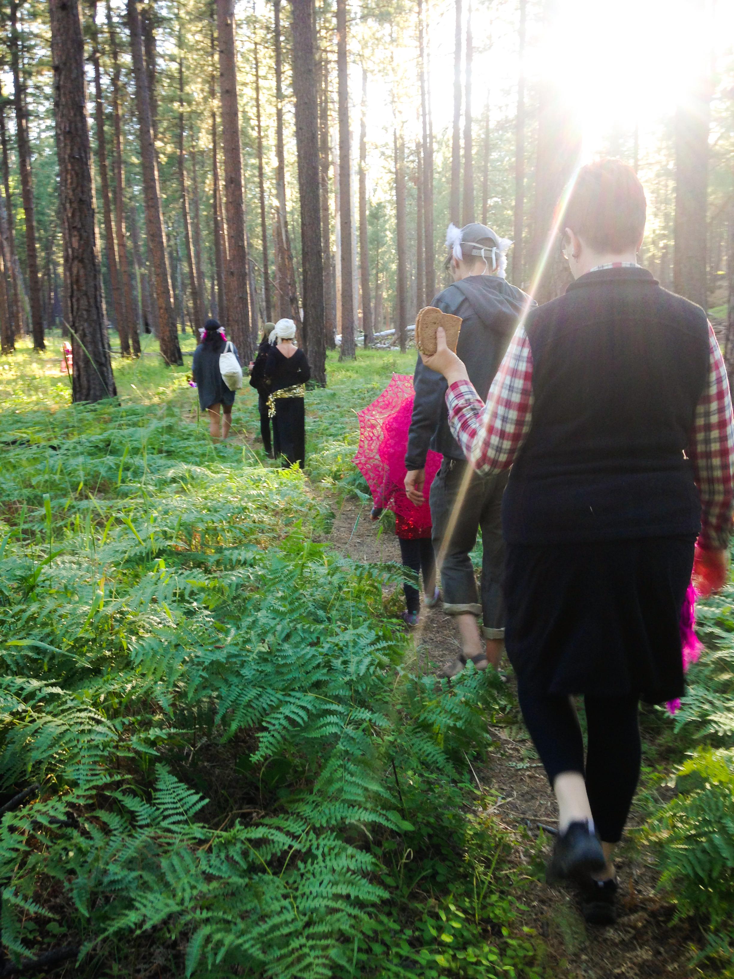 solstice-pines-walk-to-goldendome.jpg