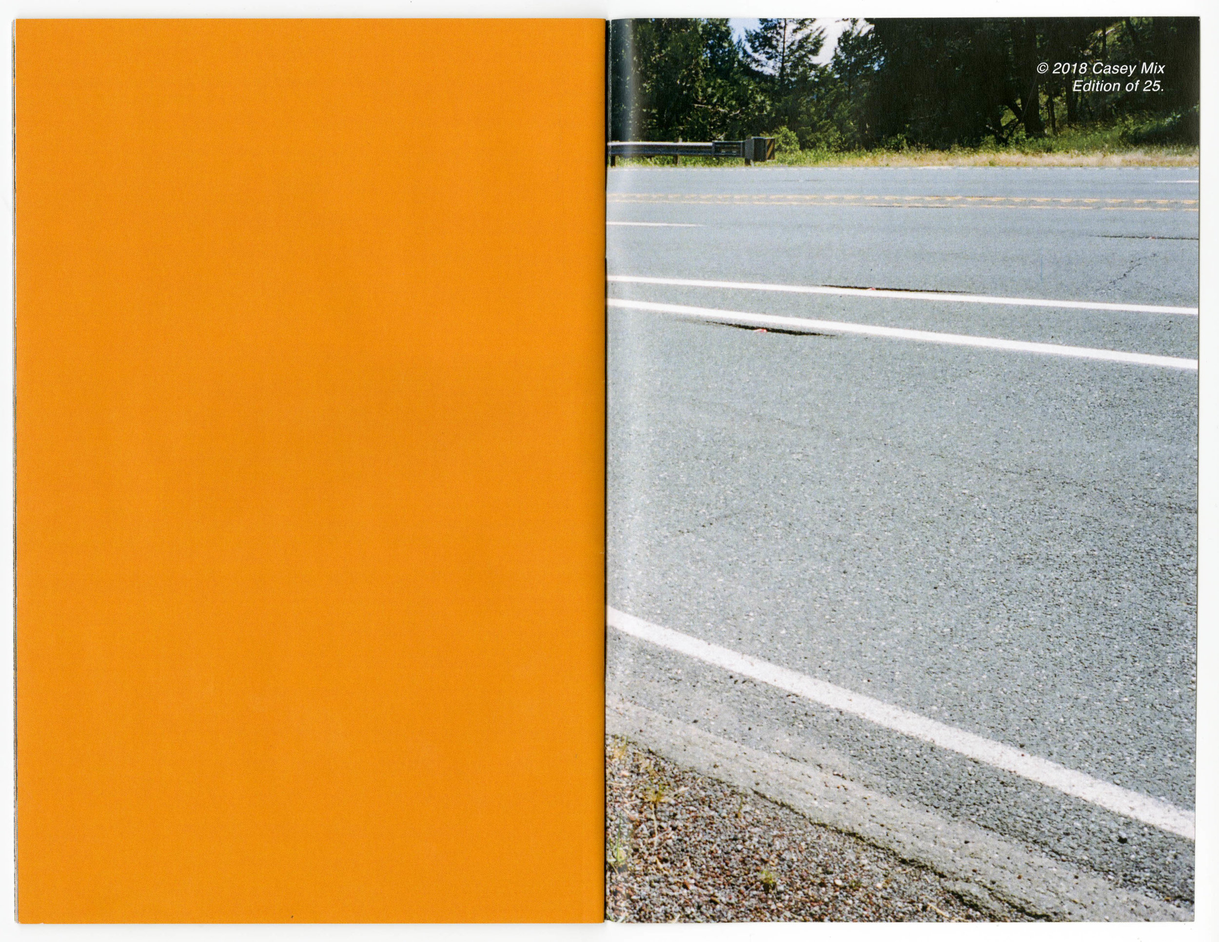 """Roadside Poppies"" 24 pages, edition of 25. all photos shot on kodak portra throughout a road trip from Santa Barbara to Olympic NP (and back) , 2018. $5 + shipping.  [UPDATE: SOLD OUT]"