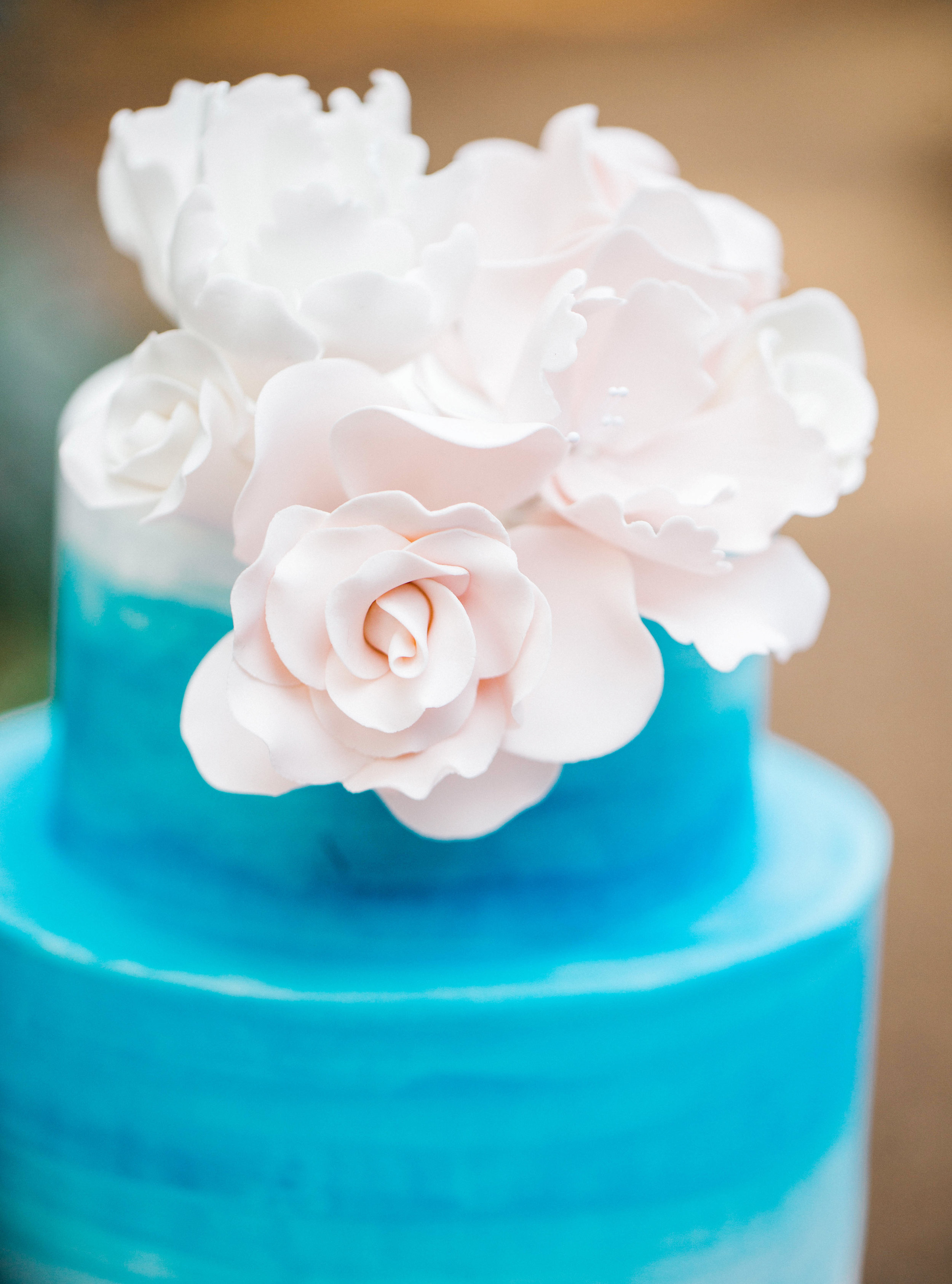 Blue wedding cake with pink roses.