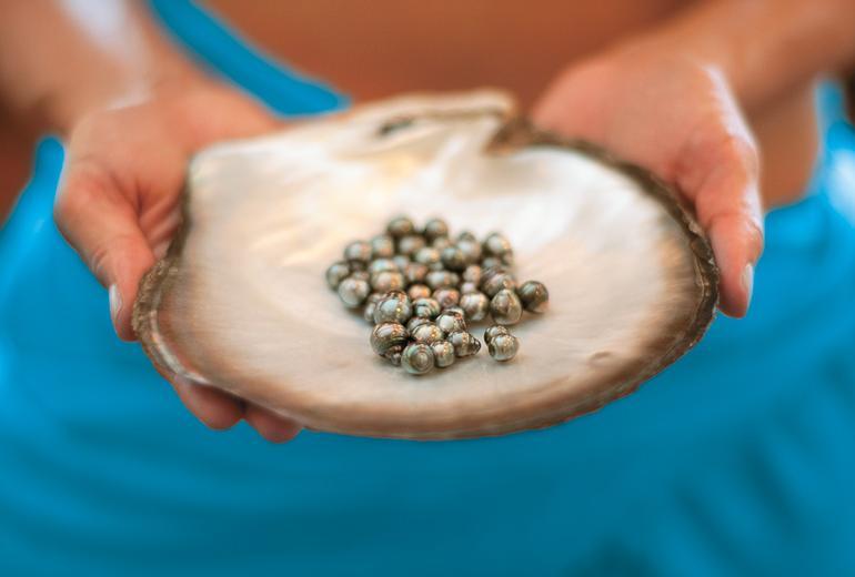 pearls_0162_772x520.jpg