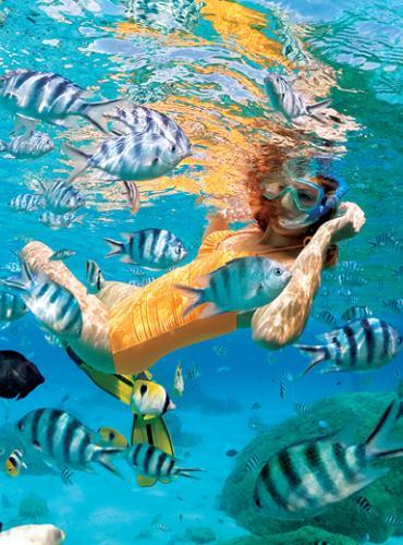 snorkel-gp0704787_772x520_0.jpg