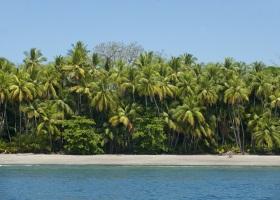 Parida_island_Panama 280 x 200.jpg
