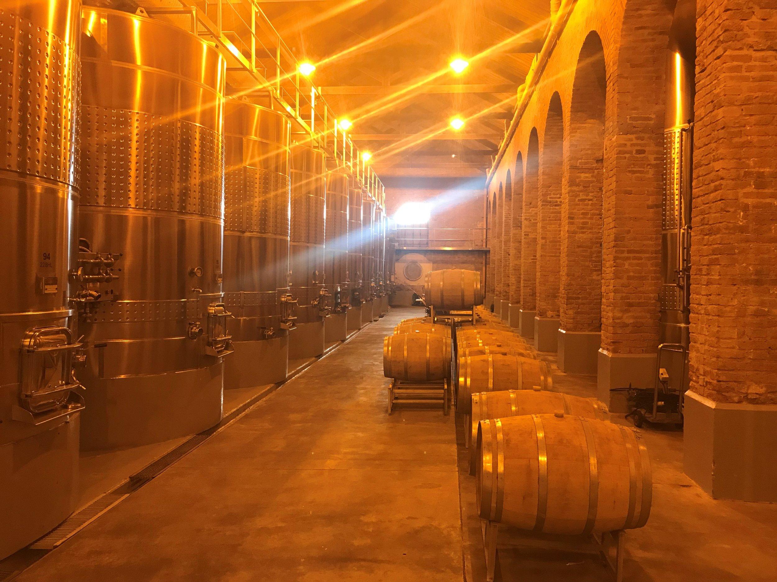 Wine Barrels1.jpg