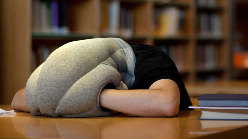 The Ostrich Pillow.