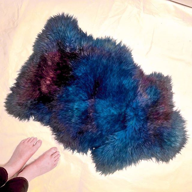 Hokay, so, I just dyed this yellowed, old IKEA sheepskin rug with acid dyes.  Opinions?  #ikeahack #wool #rainbowfur