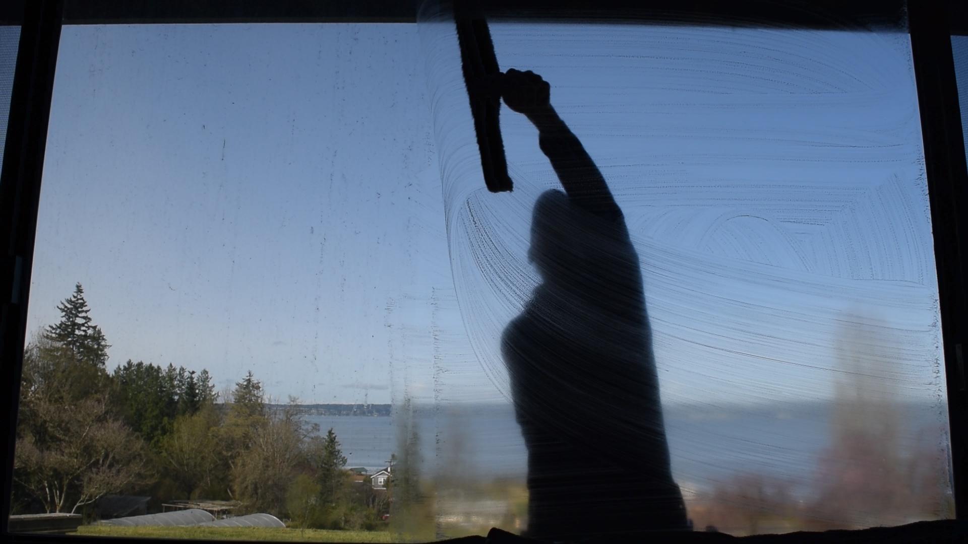 clean-dirty-window-comparison-2.jpg