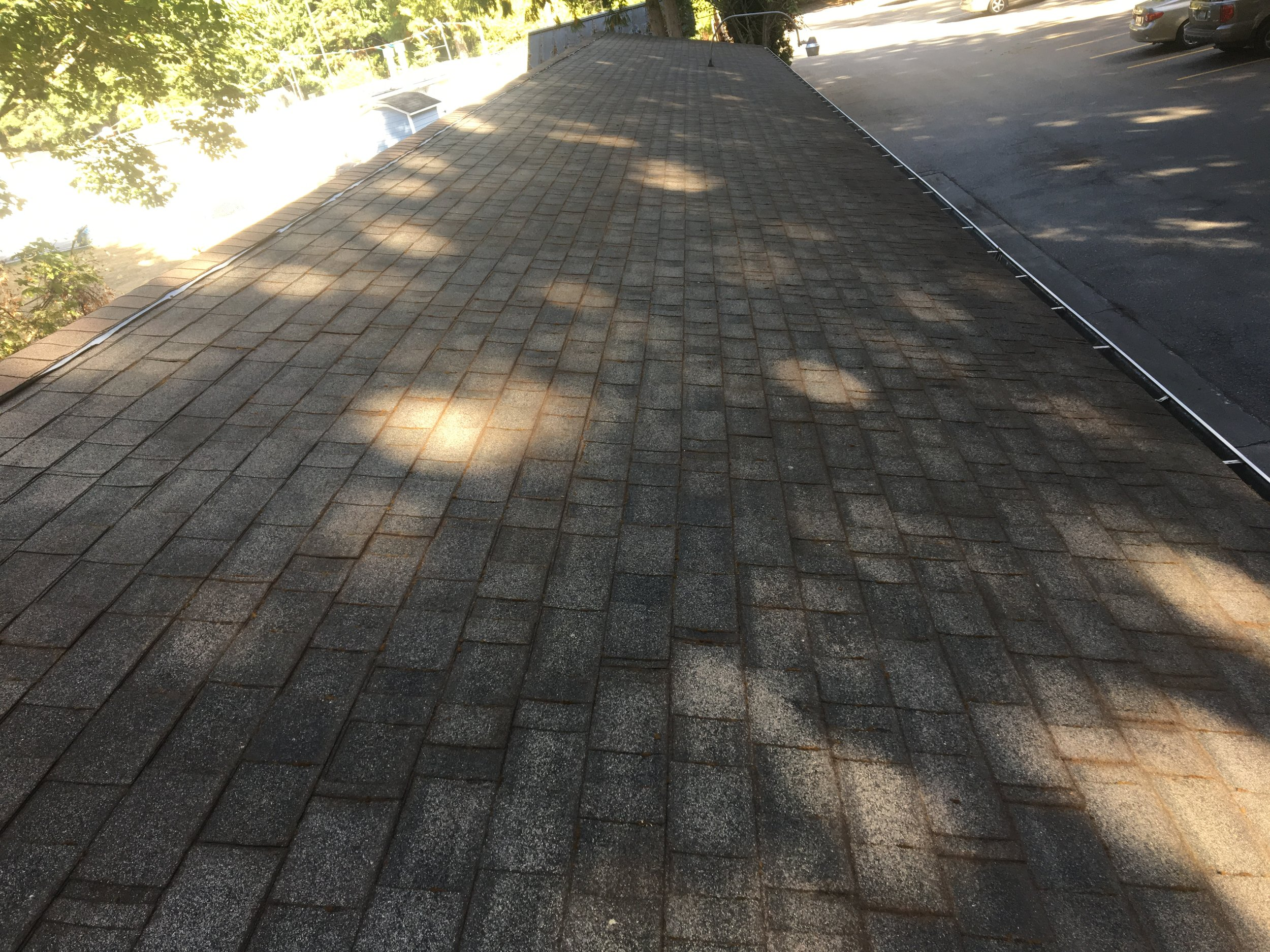 roof_6_after.JPG