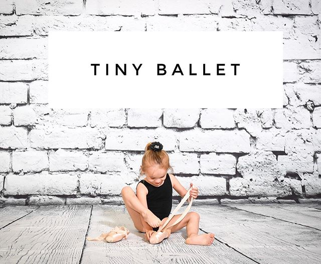 Tiny Ballet • Ages 3-5 • 12 Week Session • Register Online Today! NIAGARABALLET.COM Taught by Founder & Former Studio Director of 21 Years @mandywyrcimaga we are so excited to have your expertise for our youngest Ballerinas & Ballerinos  #niagaraballet #tinyballet #niagraballetschool #youngdancersprogram