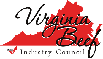 VirginiaBIC-logo.png