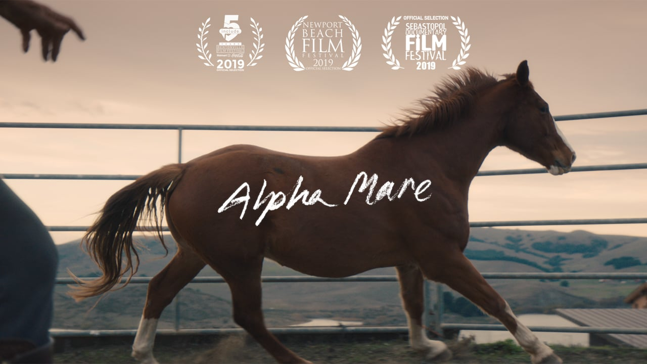 Alpha Mare (2019) | Editor & Co-Director