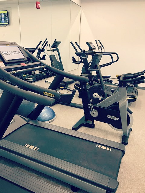 Treadmills, rowers, bikes, TrueForms, & dumbbells