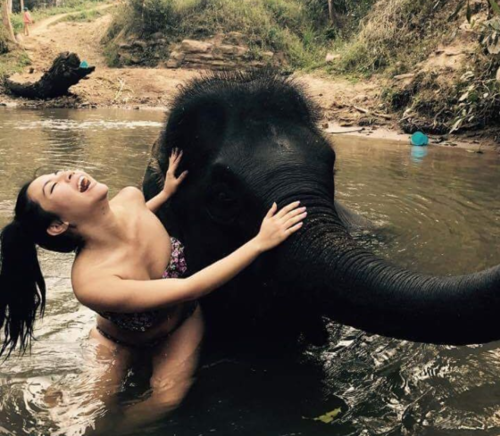 Bathe a baby elephant