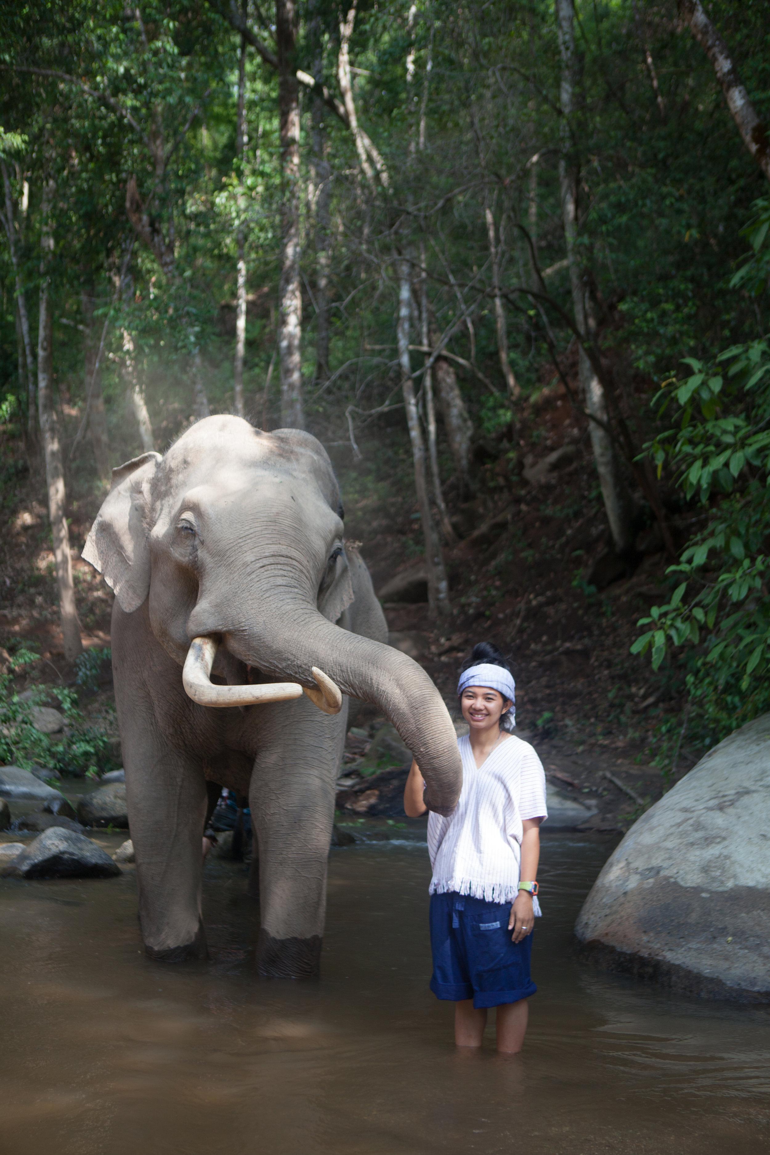 qfb-Thailand480.jpg