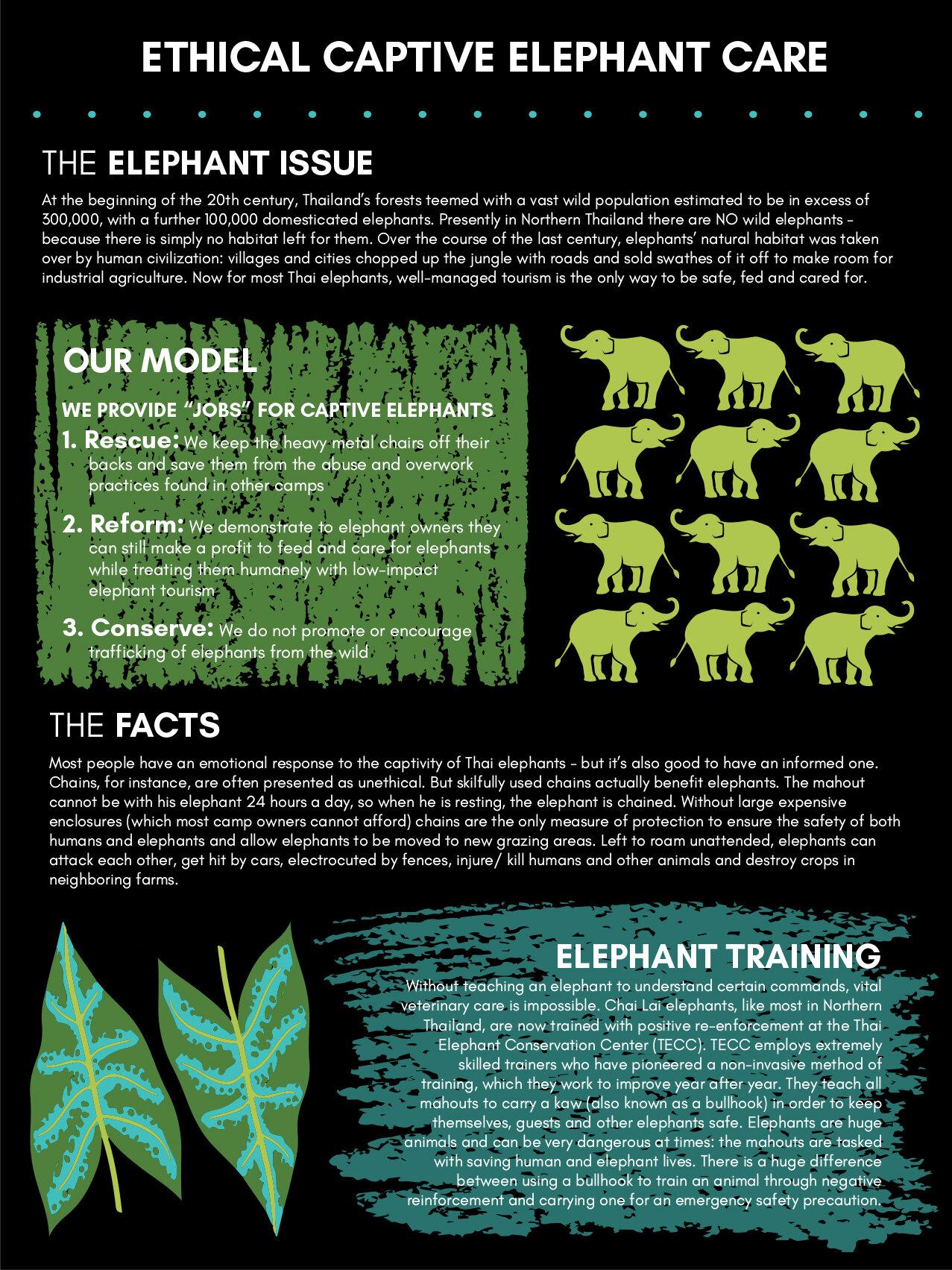 elephantposters1_smaller.jpg