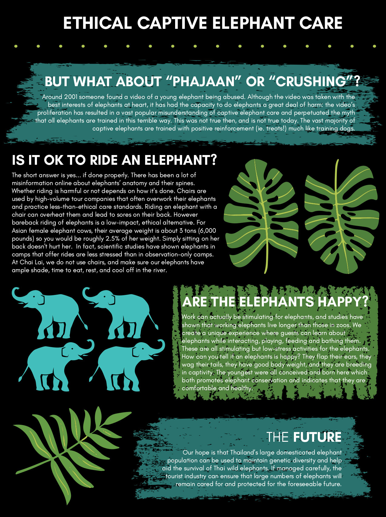 elephantposters2_smaller.jpg