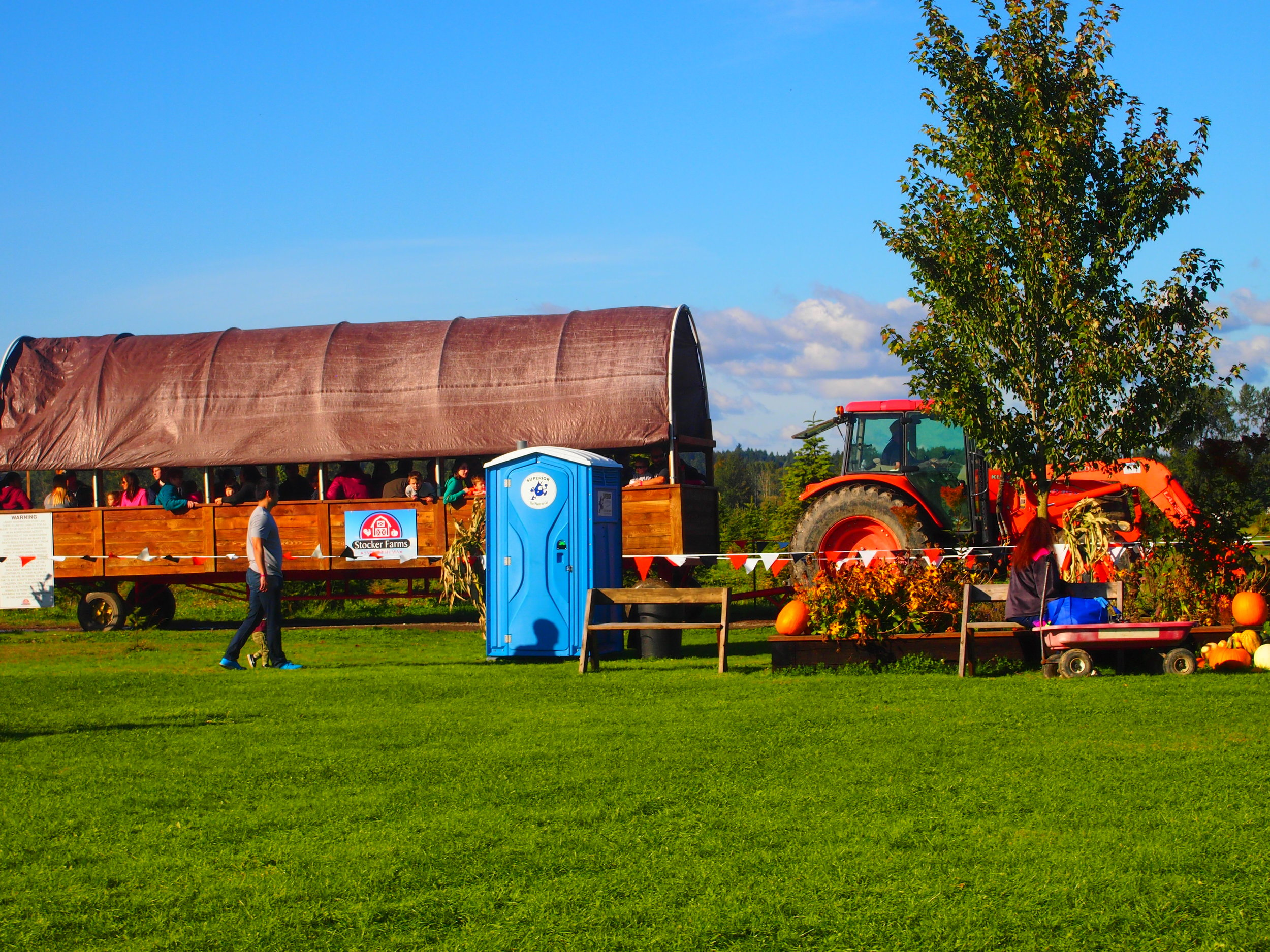 Hayrides, Photo Credit: Bella Stephens
