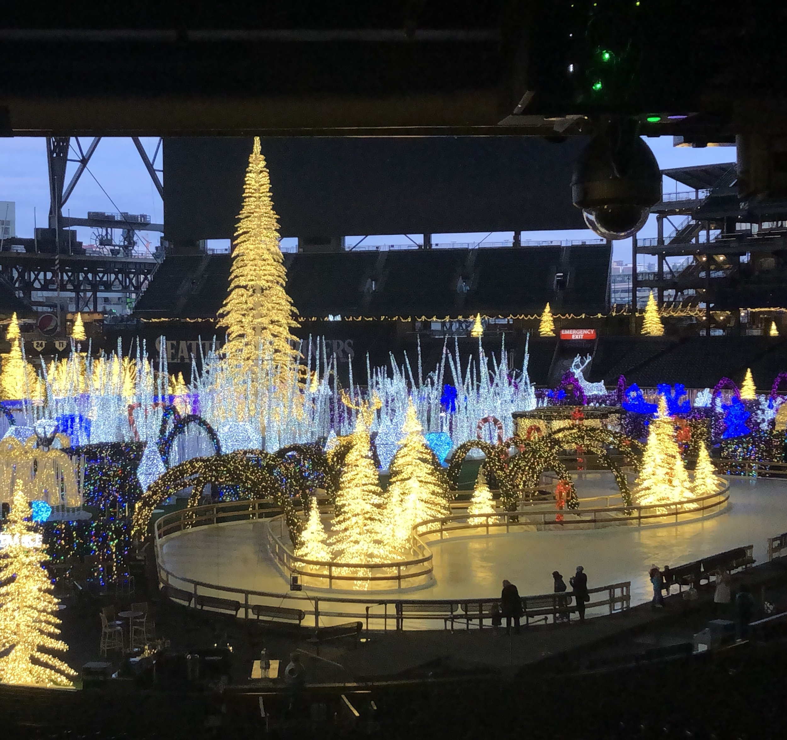 The light-filled ice rink