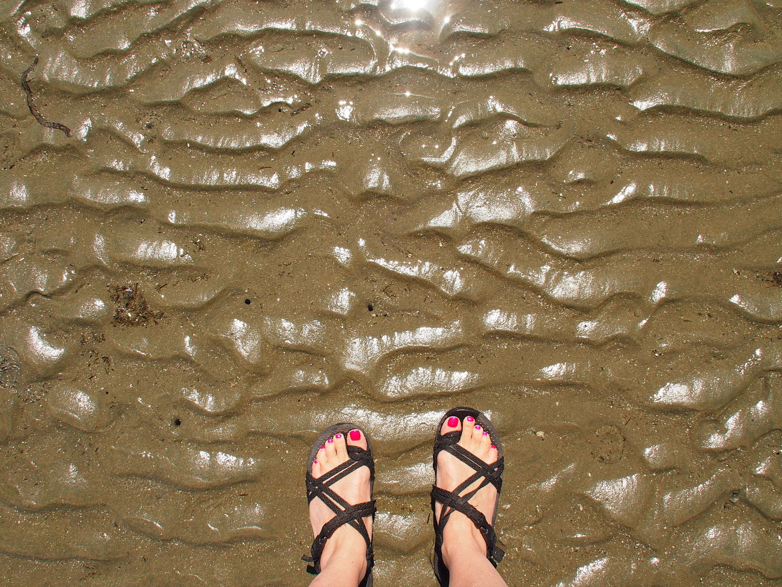 Check the lowtide charts to plan your visit