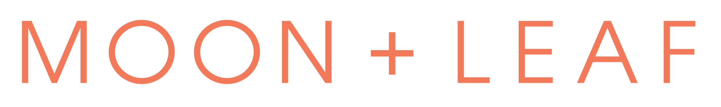 Wordmark and Color