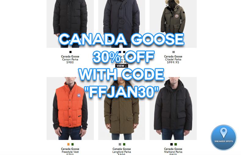 Canada Goose at Elevtd