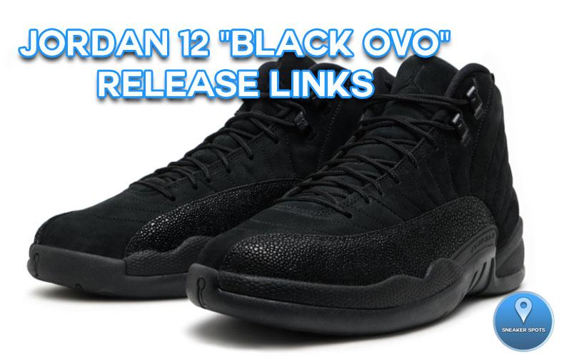 "Jordan 12 ""Black OVO"""