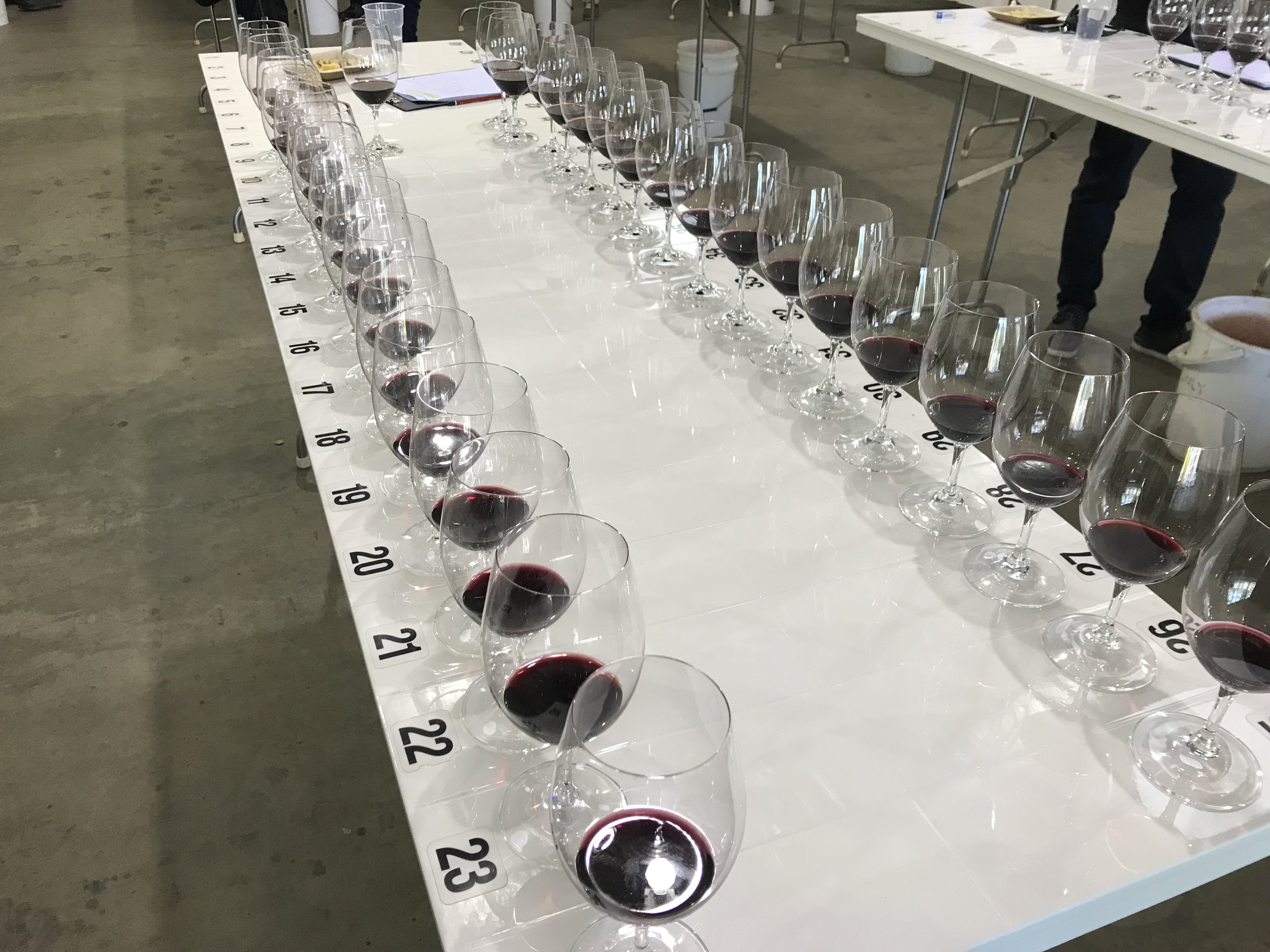 a batch of 2016 Shiraz