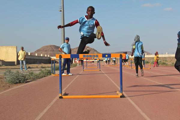 hurdles1.jpg