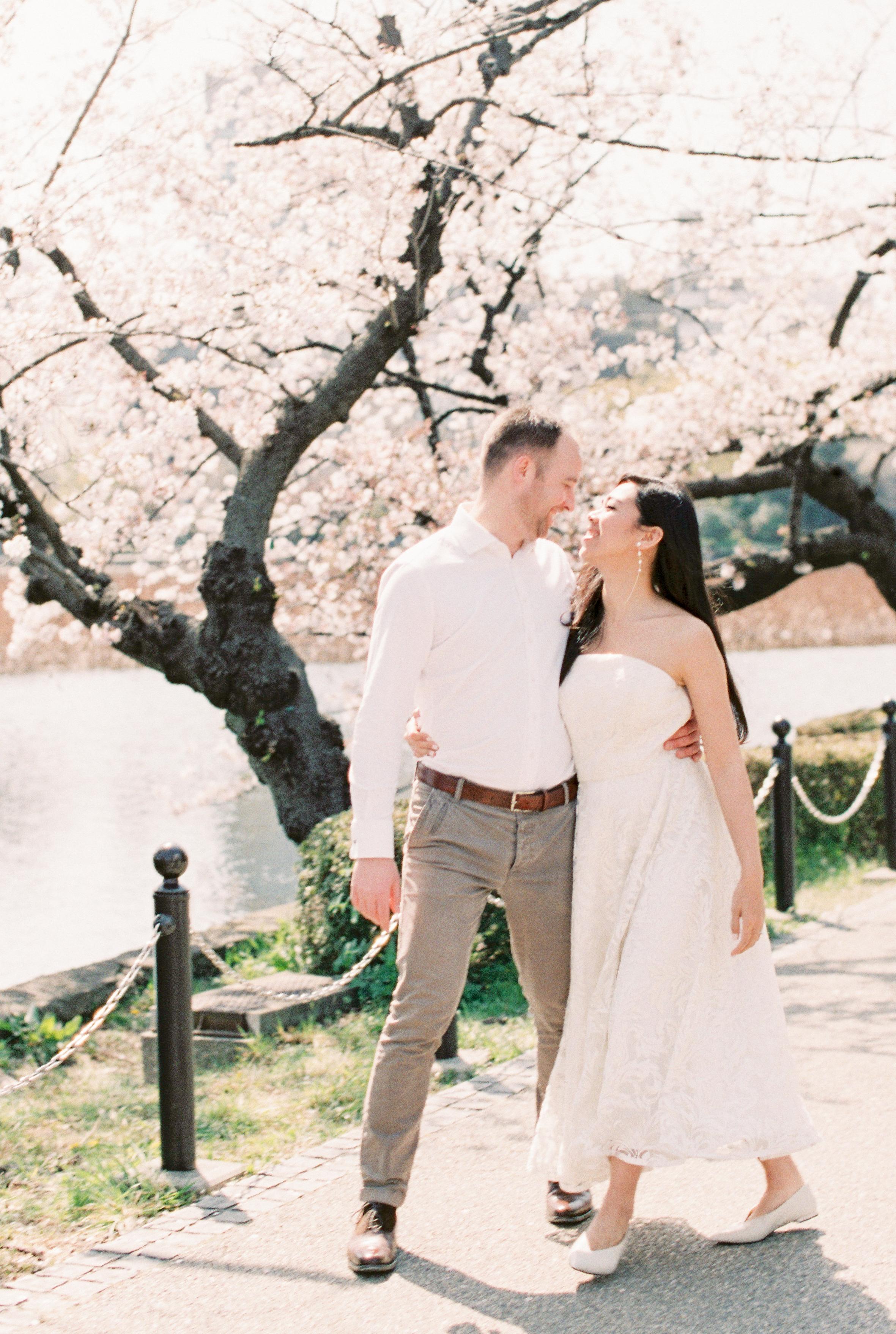 C & T ~ Fleur de Cerisier à Tokyo, Japon