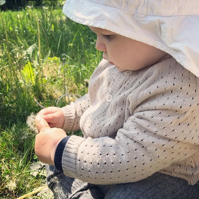 E X P L O R I N G ... and eating all the dandelions in our garden 🌱  Luckily they are organic, just like the cotton cardigan🙃🙂 #littlemightymint #thecardigan #organiccotton #madeineurope #limitedstock