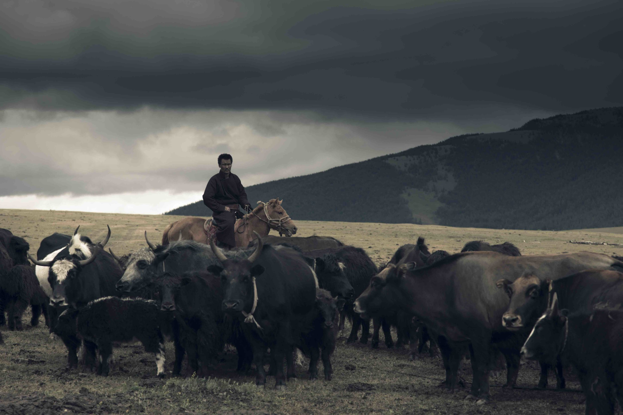 Herder tribes have ruled the majestic steppes of Mongolia for thousands of years. Picture: Tengri.