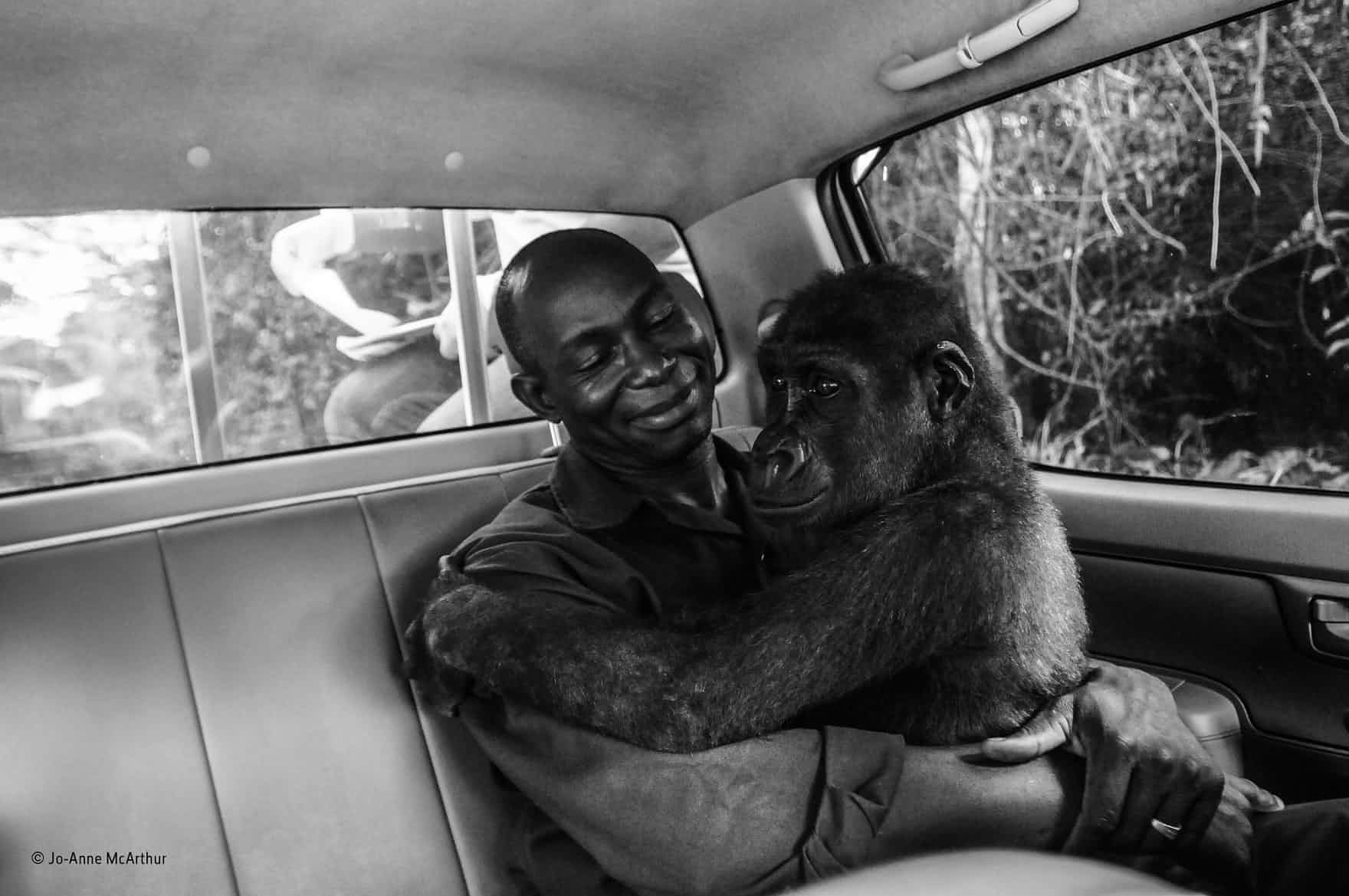 Pikin and her rescuer Appolinaire Ndohoudou. Picture: Jo-Anne McArthur.