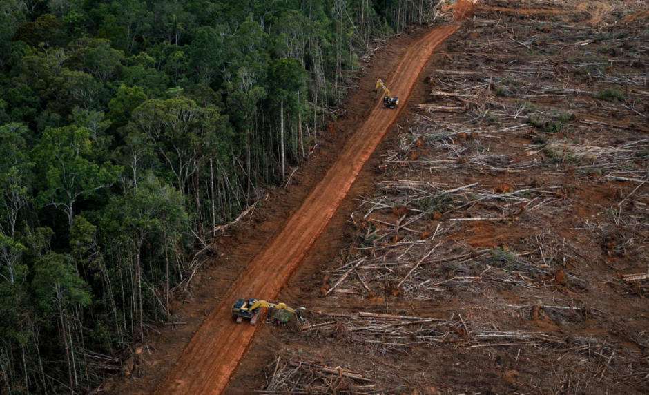 Agricultural commodities such as palm oil, soy and meat are the biggest drivers of deforestation and land use change. Picture: Greenpeace.