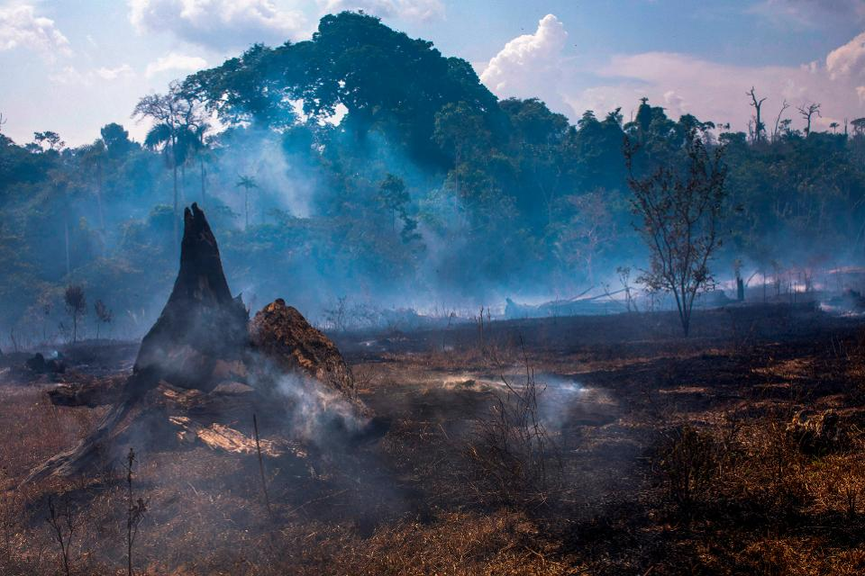 A burned area of forest in Altamira, Para state, Brazil. Joao Laet/AFP/Getty Images