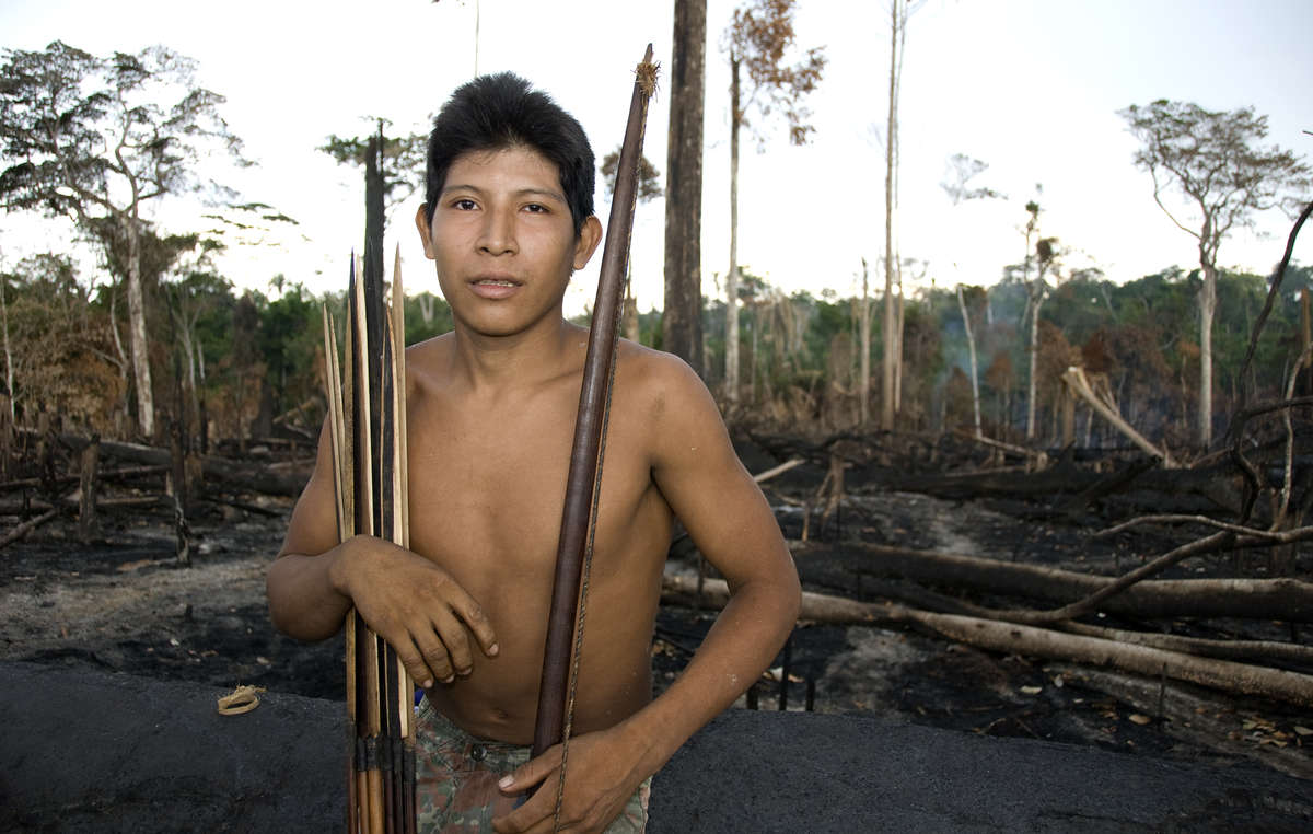 Many indigenous territories in Brazil have been burned by farmers and loggers for years, though 2019s fires are especially bad. Awá man Hemokomaá stands in his peoples forest after it was burned in 2010. © Fiona Watson/Survival